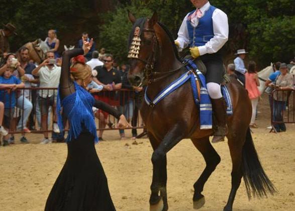 20150607_cultura_feria_jornada_caballo_01