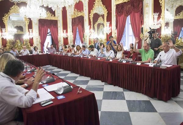 Pleno de la Diputación de Cádiz.