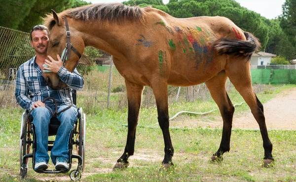 Terapia con caballos para la Asociación de Discapacitados Las Canteras