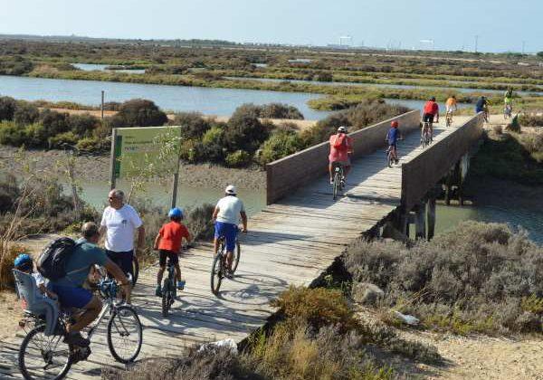 Bicicletas por el parque de Los Toruños y La Algaida